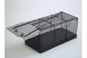 Traps for mice
